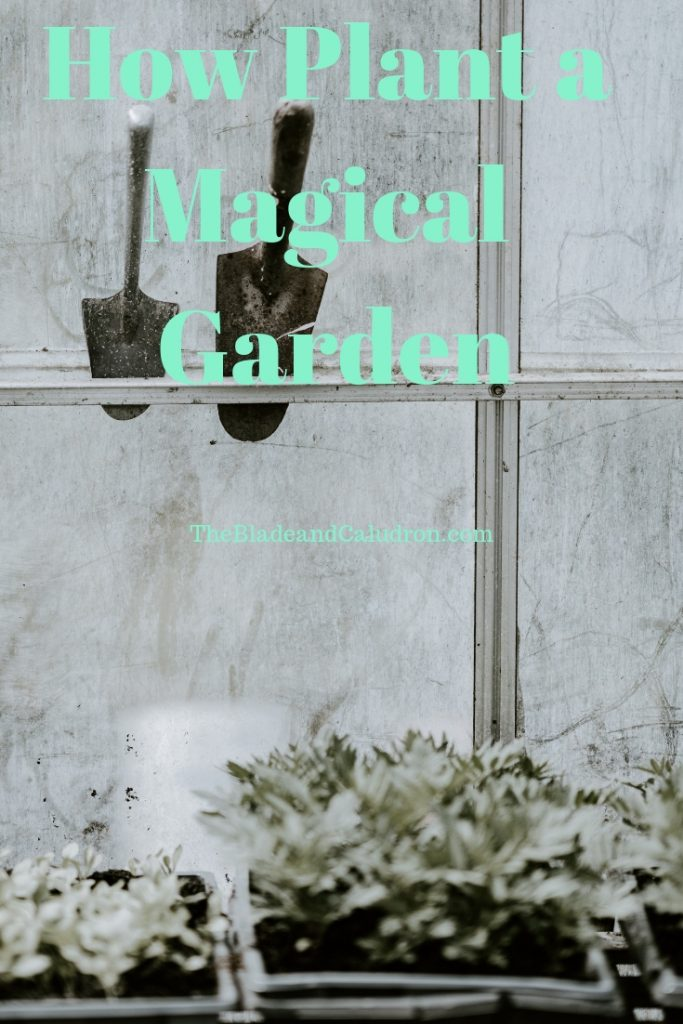 How to plant a magical garden #gardening #witchraft
